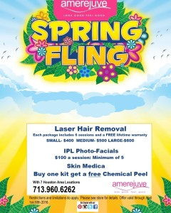 Spring_Fling_poster_01_copy